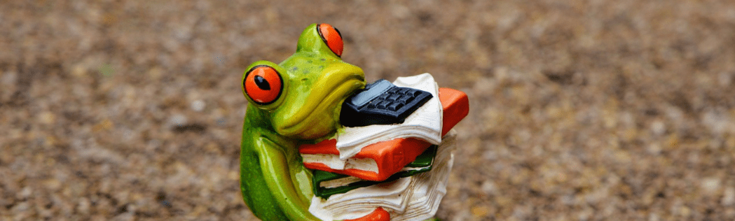 frog figurine carrying books