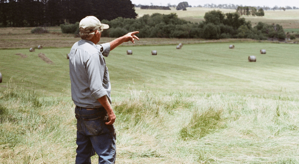 An older farmer man pointing to the distance on a field