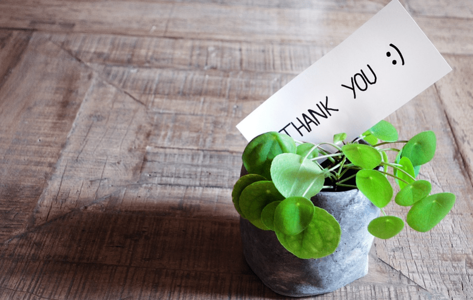 Thank you card with a potted plant
