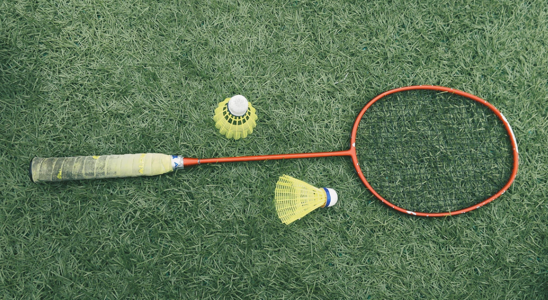 Badminton racket and birdies on the grass