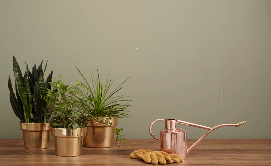 How To Use These 2020 Color Trends To Make Your Mobile Home Shine