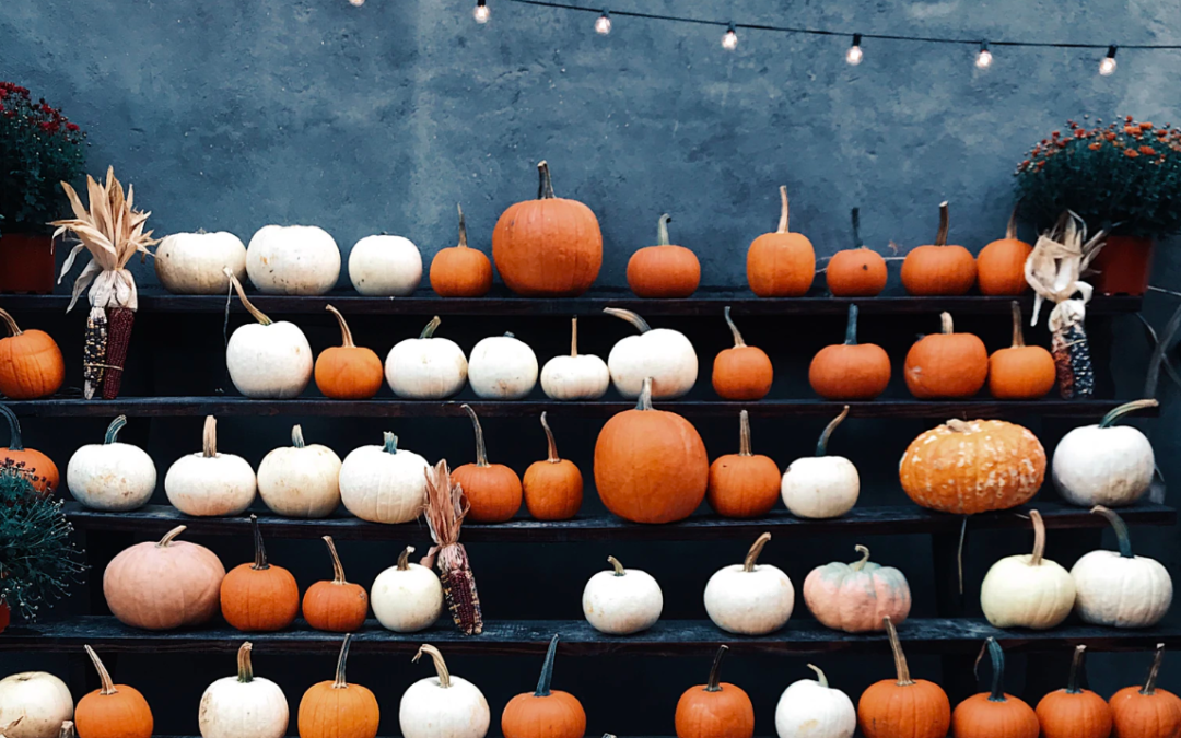 Pumpkins Everywhere! How To Make The Best Use Of Your Pumpkins