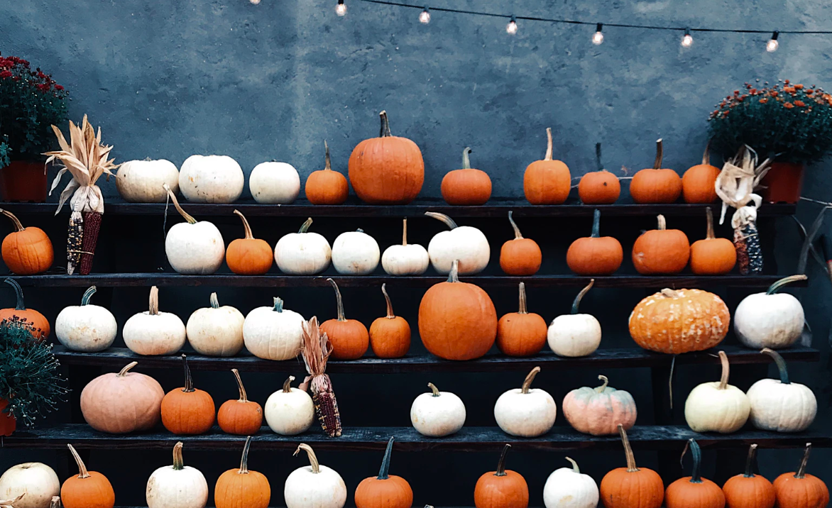 "Featured image for ""Pumpkins Everywhere! How To Make The Best Use Of Your Pumpkins"""