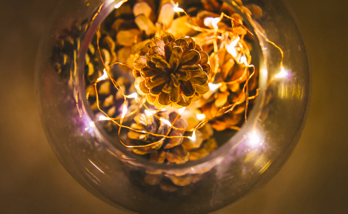 Pinecones in a bowl with lights