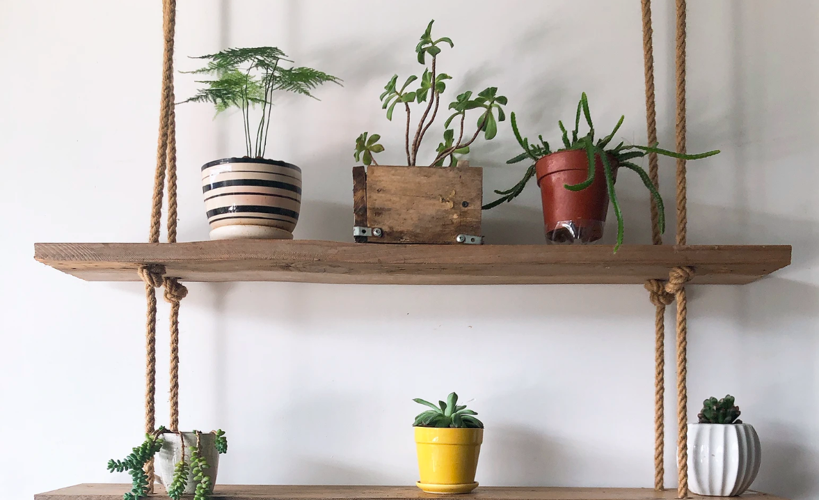 Hanging shelves with plants
