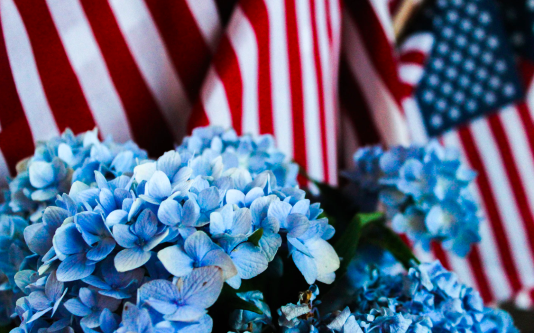 Trending Ways To Celebrate Memorial Day 2020 (Mobile Home Edition)