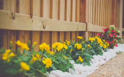 Mobile Home Landscaping Ideas For The Homeowner On The Go