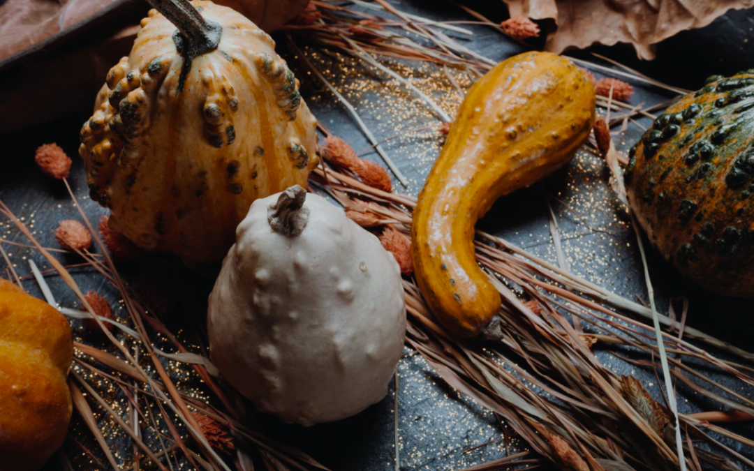 5 Classy Pumpkin And Gourd Ideas For Your Mobile Home Porch