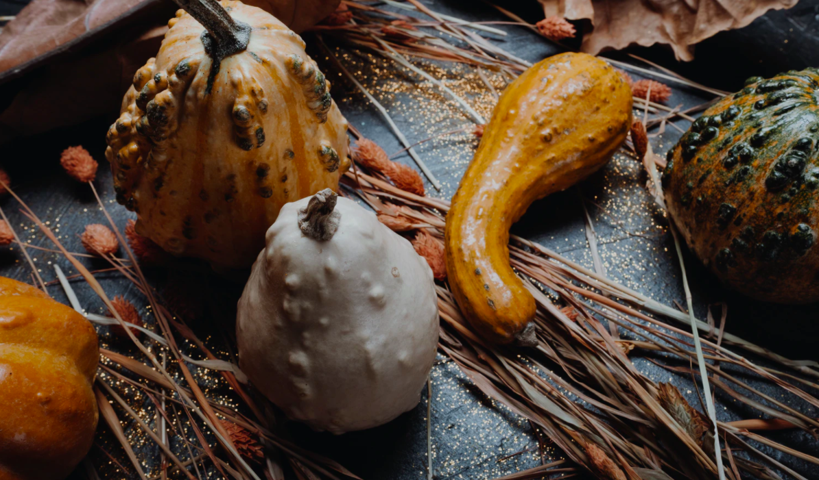 """Featured image for """"# Classy Pumpkin And Gourd Ideas For Your Mobile Home Porch"""""""