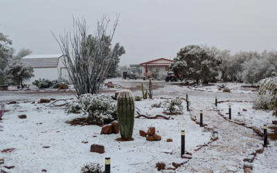 How To Improve Mobile Home Curb Appeal During The Cold Months