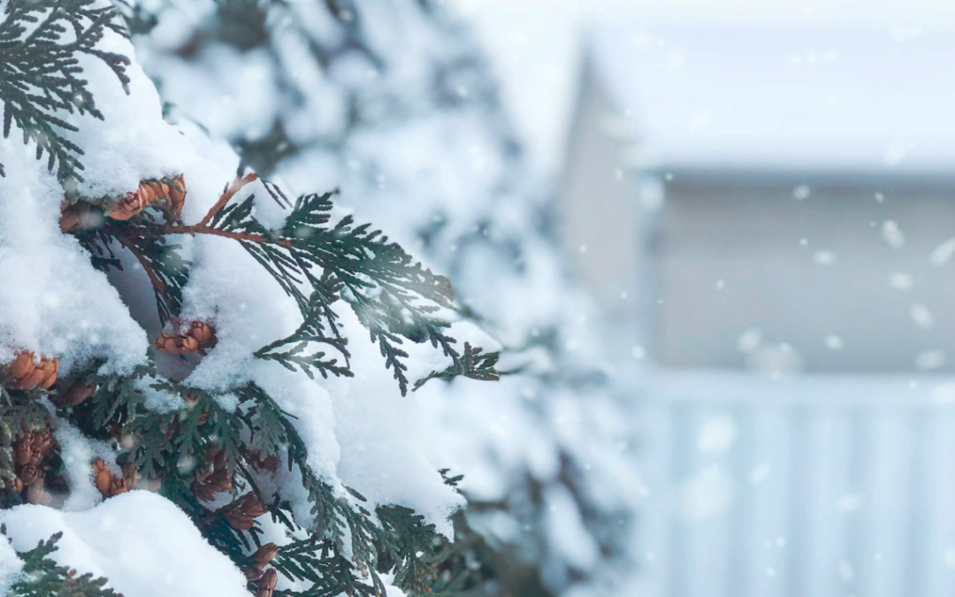 FAQ: Can You Sell A Mobile Home In Winter?