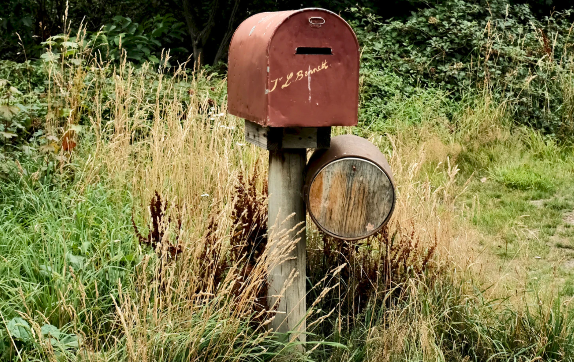 Wooden post mailbox surrounded by weeds